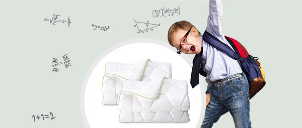 2 одеяла Aloe Vera по цене 1