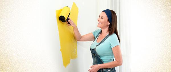 Paint Roller maalri komplekt