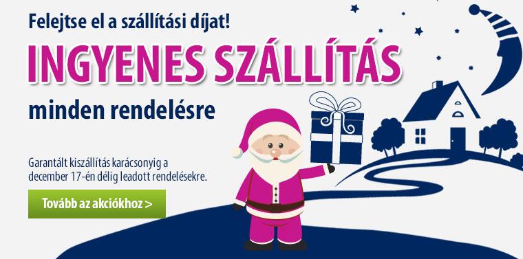 Ingyenes szállítás minden rendelésre! Garantált kiszállítás karácsonyig a december 17-én délig leadott rendelésekre.