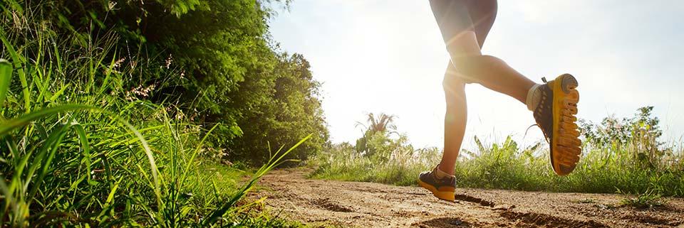 Спорт и активный отдых