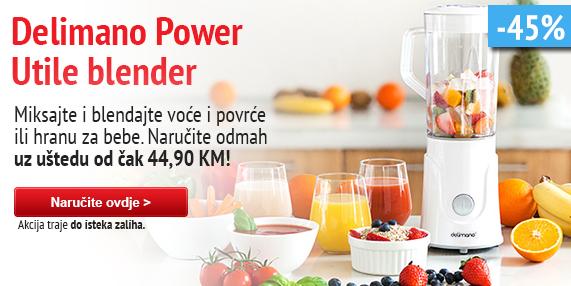 Delimano Power blender