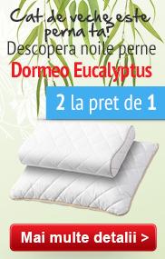 Pernele Dormeo Eucalyptus 2 la pret de 1!