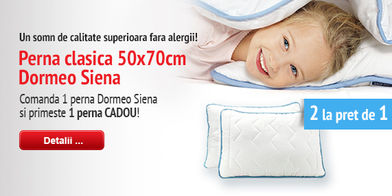 Siena Pillow 2for1 2017