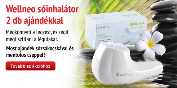 Wellneo Salt Inhaler with 2 gift